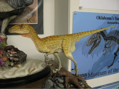 Cretaceous Creations of America Build-Up
